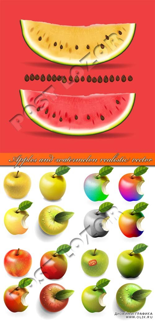 Яблоко и арбуз | Apples and watermelon realistic vector