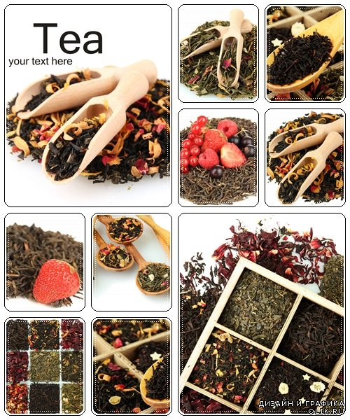Tea collection, 8 - stock photo
