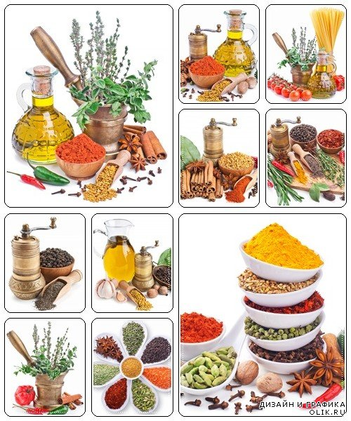 Large collection of different spices and herbs - stock photo