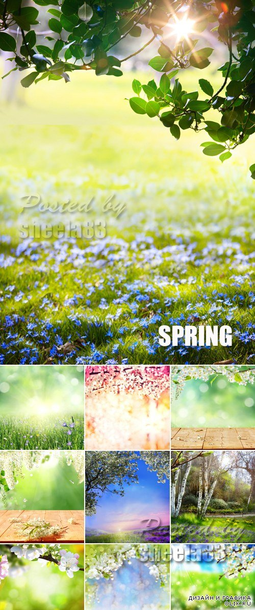 Stock Photo - Spring Nature Backgrounds 3