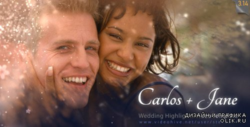 Wedding Highlights - Video Template - Project for AFEFS (Videohive)