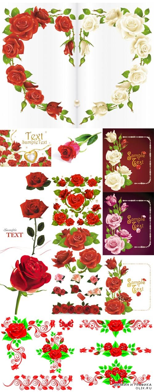 Set of Red Roses Vector Design