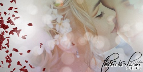 Wedding Album 1837869 - Project for After Effects (Videohive)