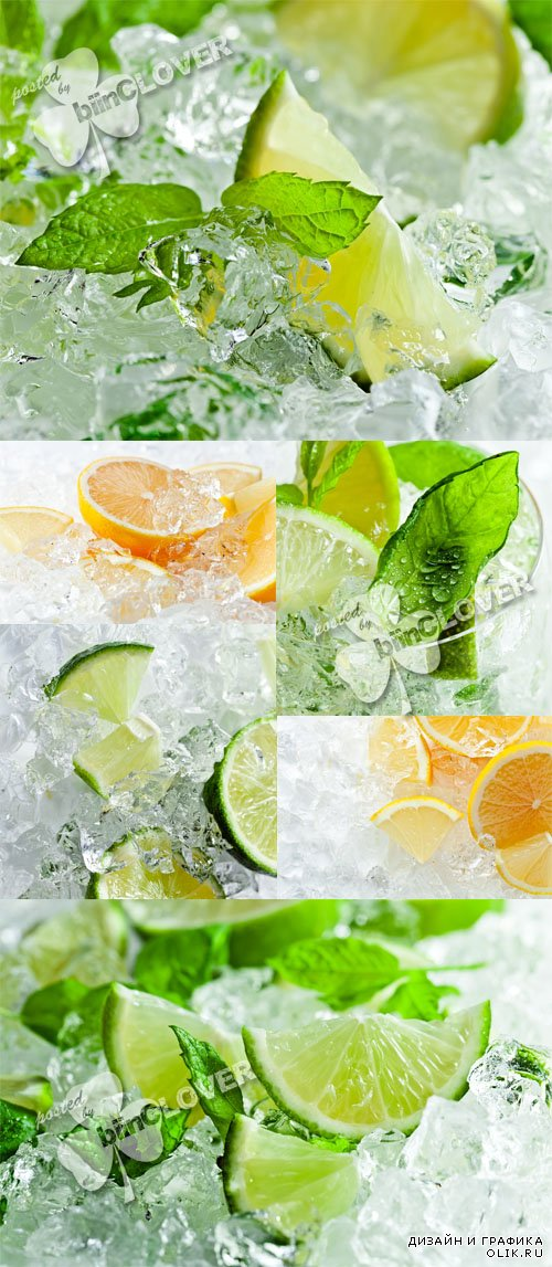 Lemon and lime with ice 0578