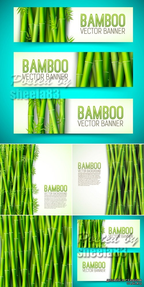 Bamboo Backgrounds Vector