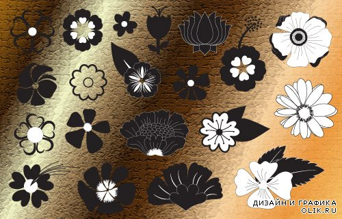 Silhouettes of flowers and decorative elements vector
