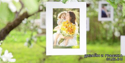 Photo Gallery Blossoms and Bees - Project for AFEFS (Videohive)