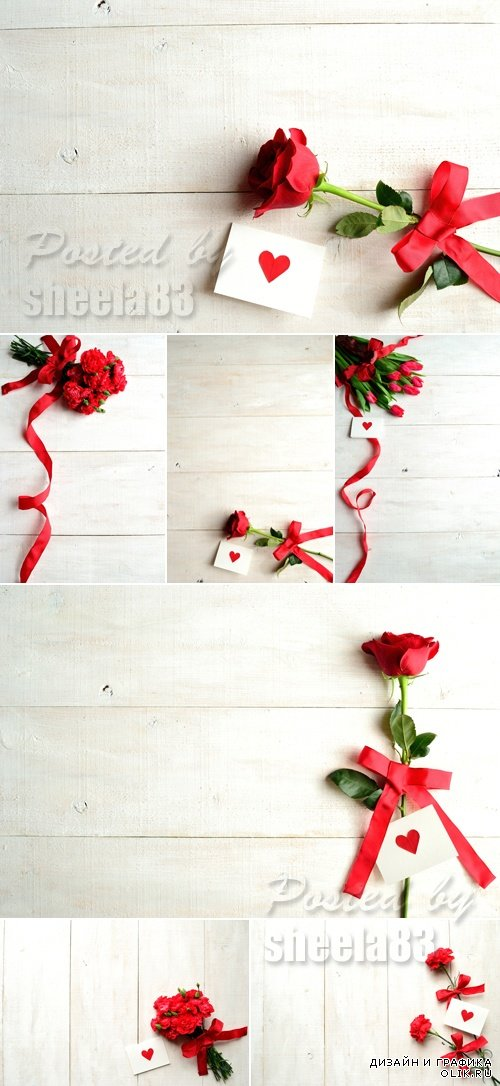 Stock Photo - Flowers on White Wooden Background
