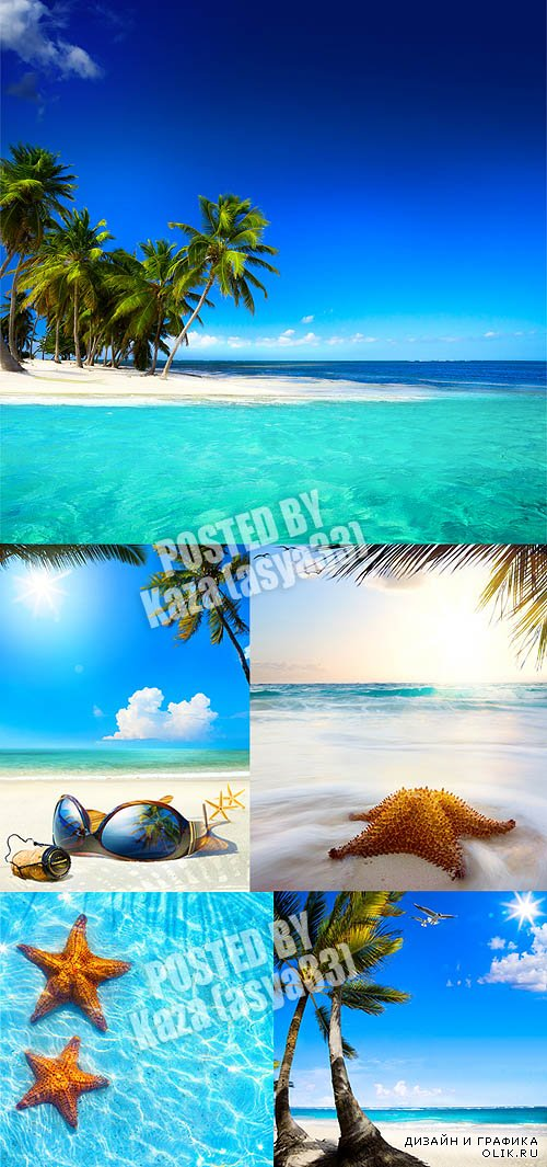 Tropical summer beach