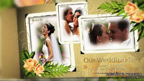 After Effect Project - Our Precious Wedding Album