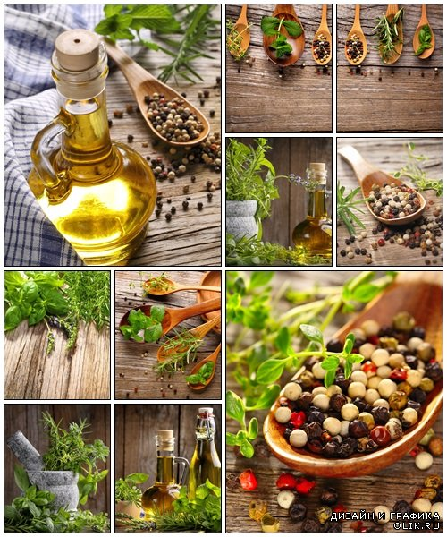 Herbs, oil and spice - Stock Photo