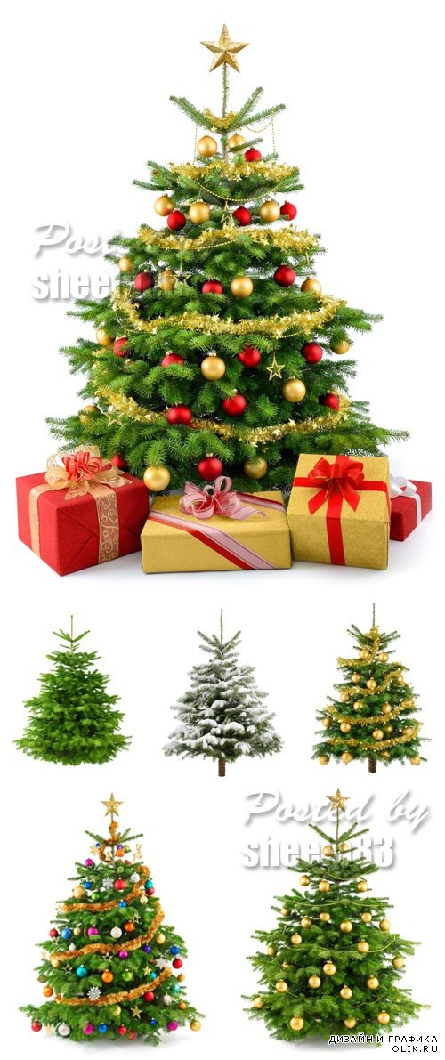 Stock Photo - Decorated Christmas Tree Isolated 2