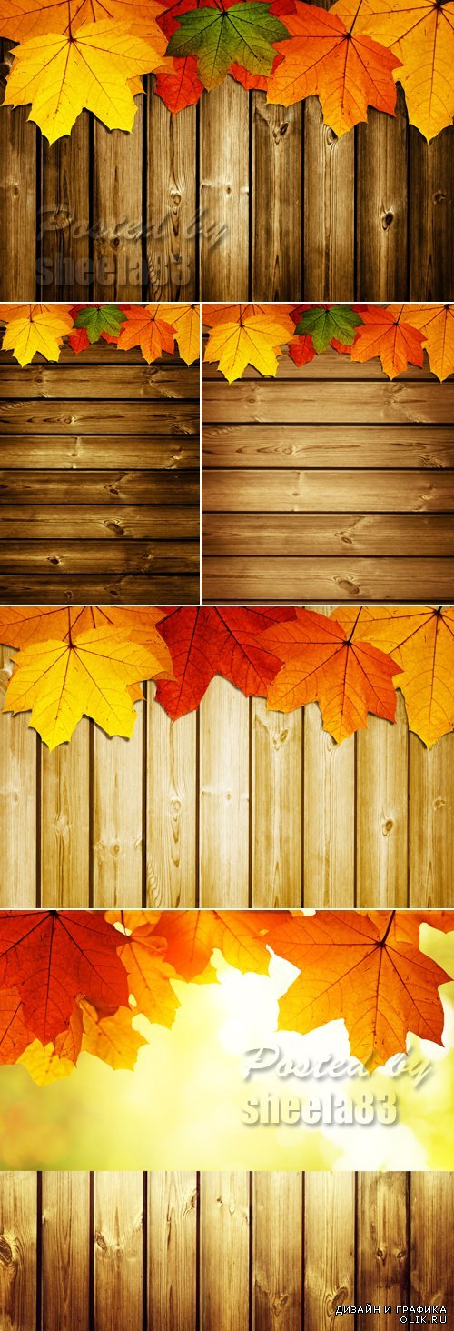 Stock Photo - Autumn Leaves on Wooden Background 6