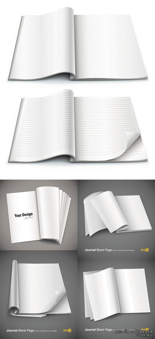 Exquisite vector blank notebook