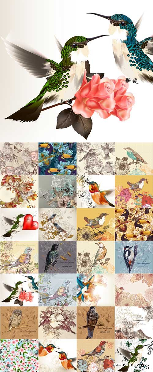 Flower and birds background art vector