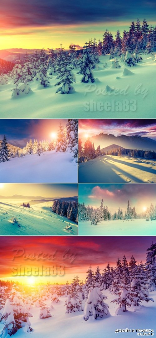 Stock Photo - Winter Nature 3