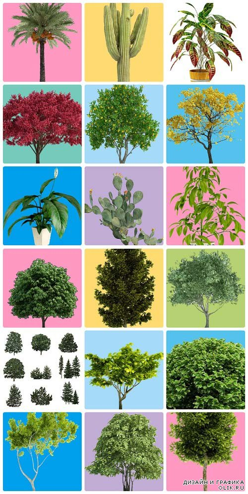 Stock Transparent Trees Pack