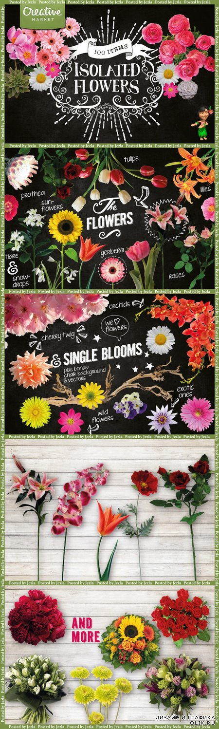 100 Isolated Flower Chalk Kit - 170379