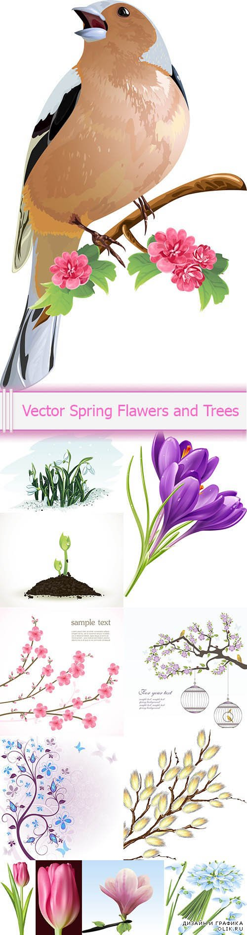 Vector Spring Flawers and Trees