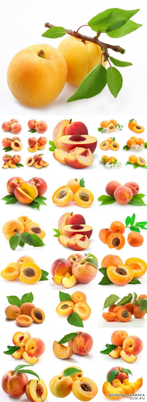 Ripe apricots and peaches