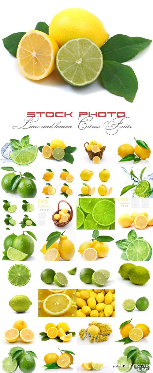 Lime and lemon. Сitrus Fruits