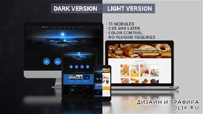 Website Presentation (Dark & Light) - Project for After Effects (Videohive)