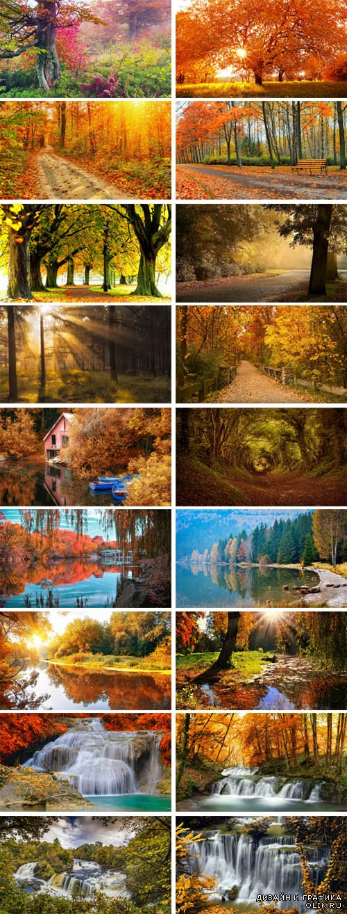 Stock Photo - Gold Autumn 2
