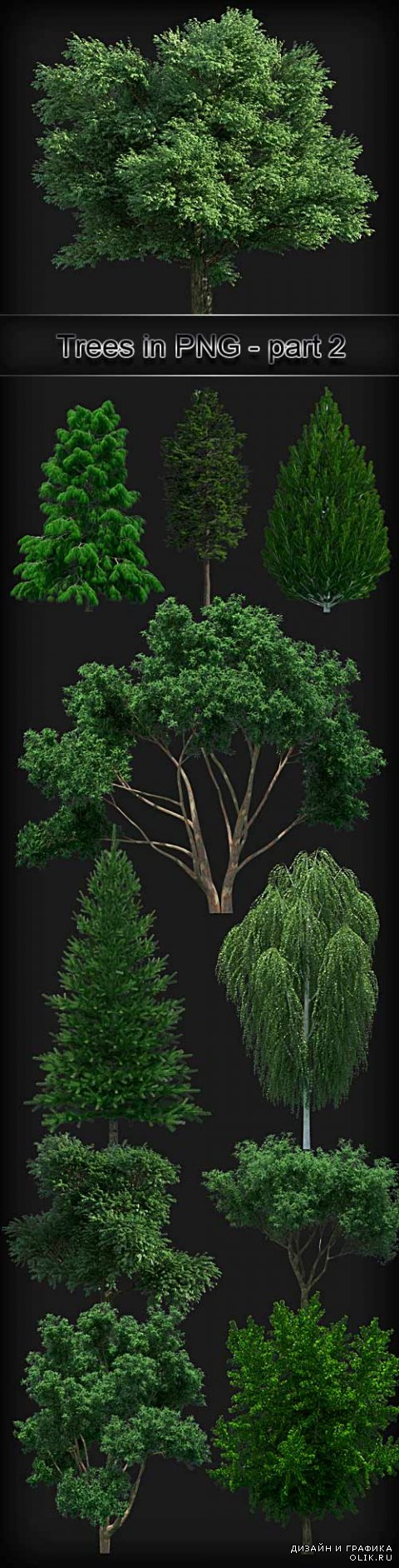Trees on a transparent background PNG - 2
