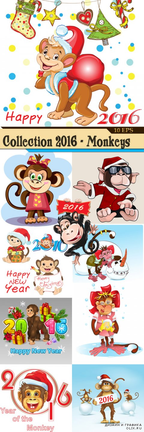 Collection 2016 - Monkeys