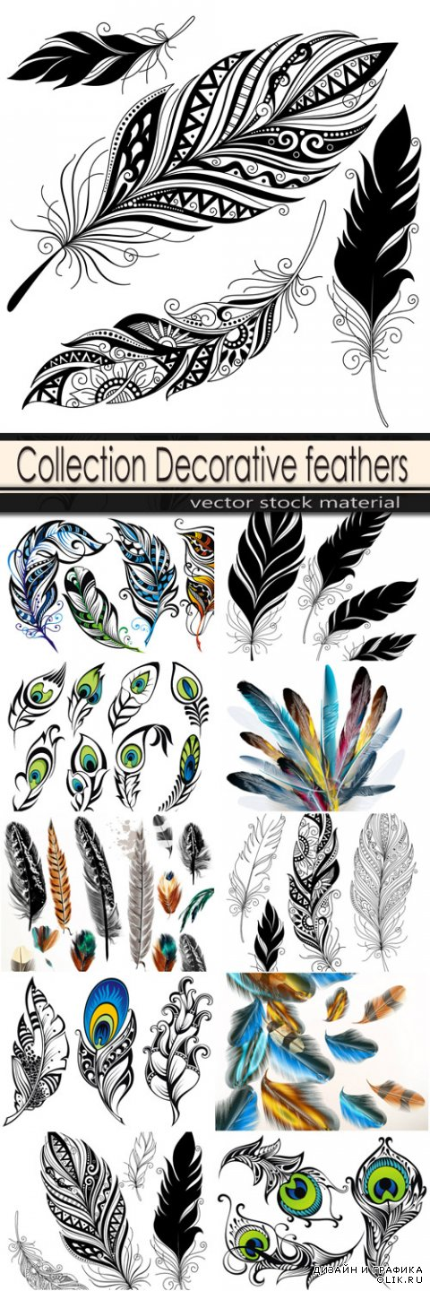 Decorative feathers with patterns