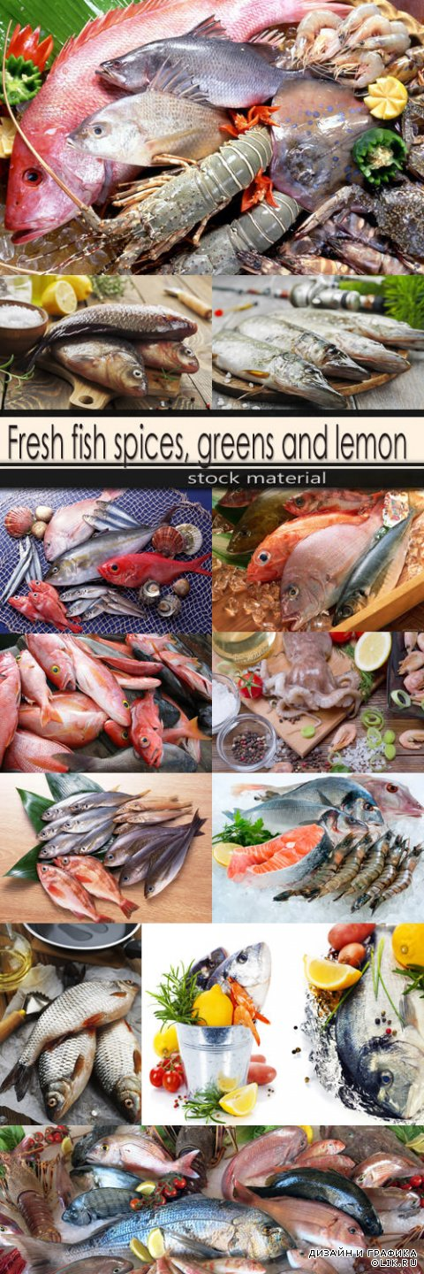 Fresh fish spices, greens and lemon