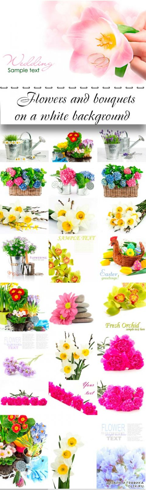 Flowers and bouquets on a white background
