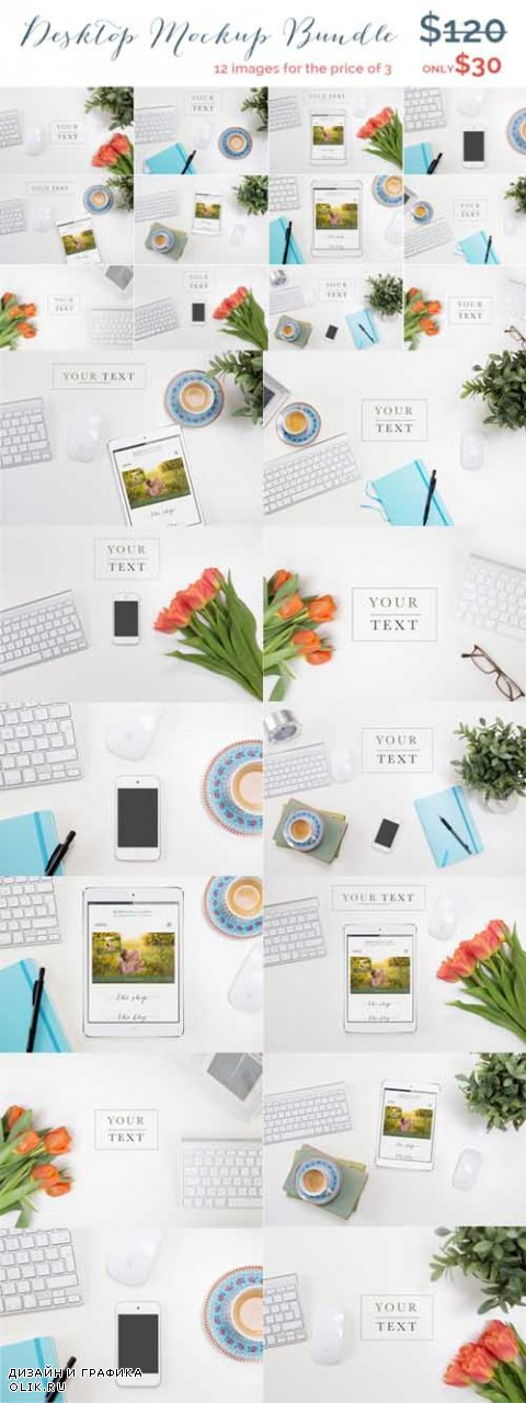 Styled Desktop Mockup Bundle - 529458