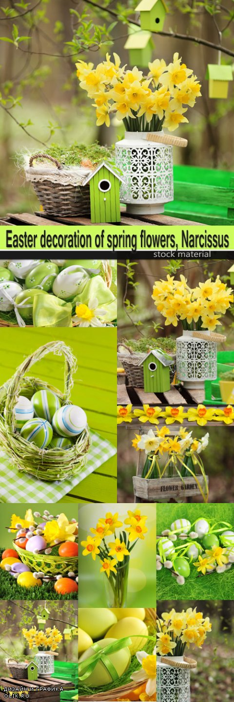 Easter decoration of spring flowers, Narcissus