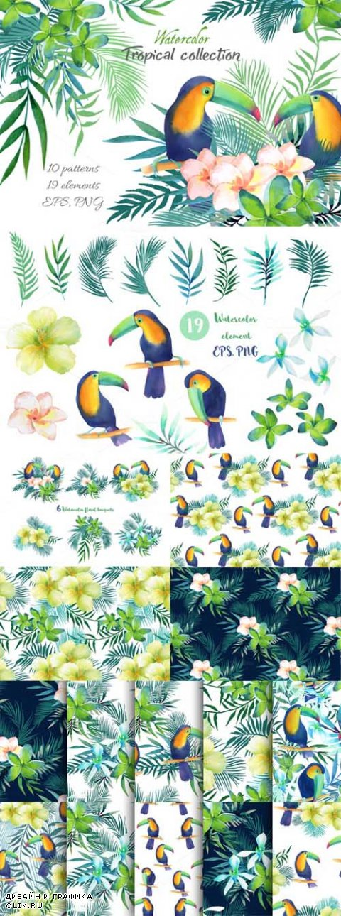 Tropical collection - 562316