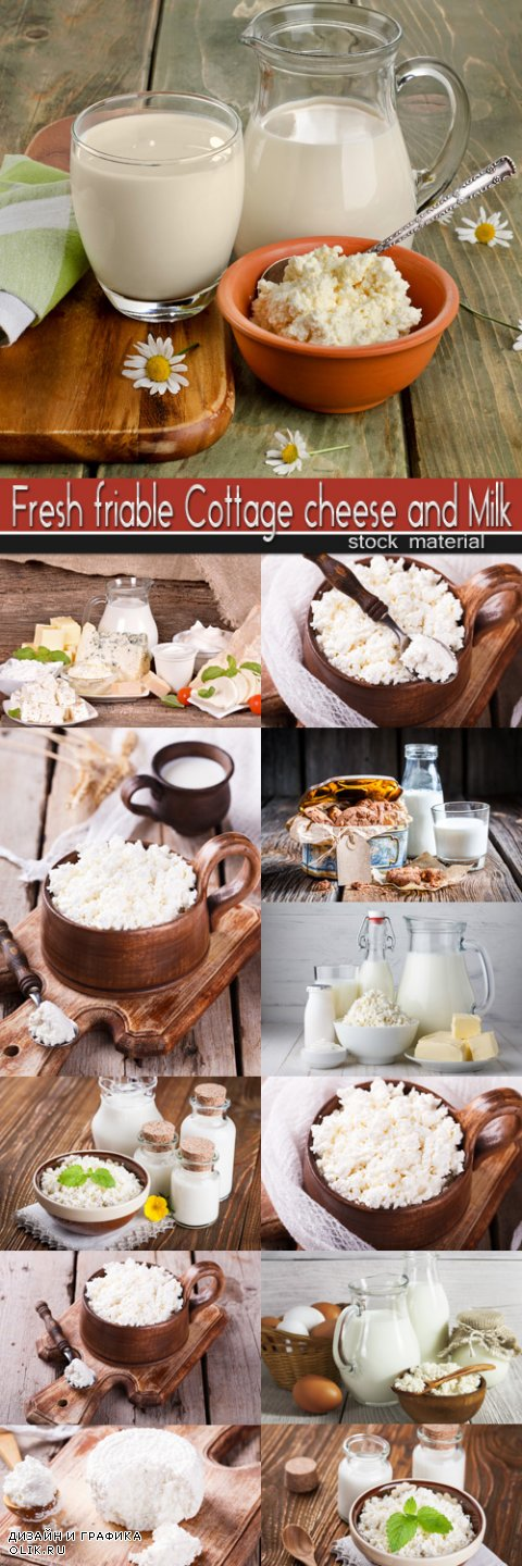 Fresh friable Cottage cheese and Milk
