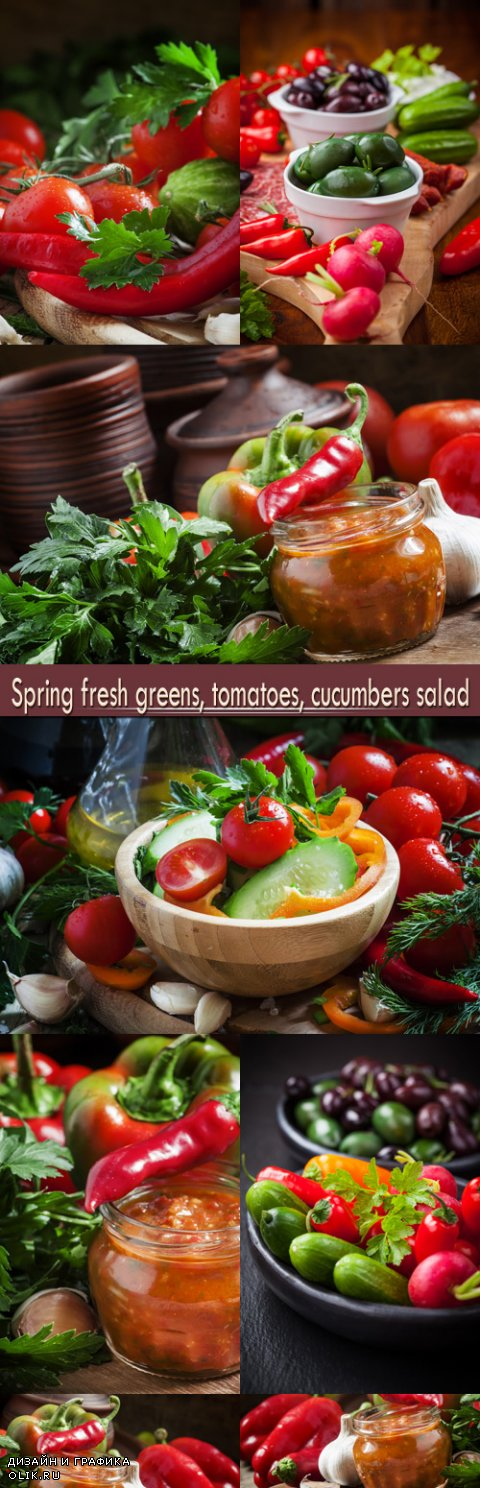 Spring fresh greens, tomatoes, cucumbers salad