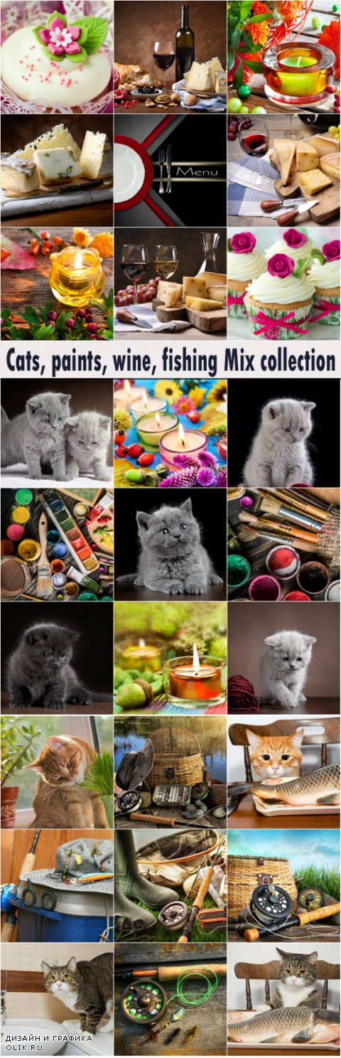 Cats, paints, wine, fishing Mix collection