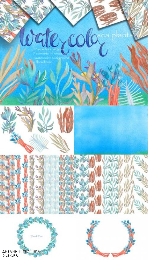 Watercolor sea plants and patterns - 618352
