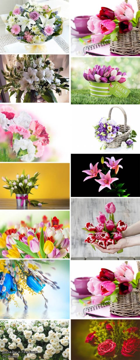 Beautiful Flowers Collection p.1