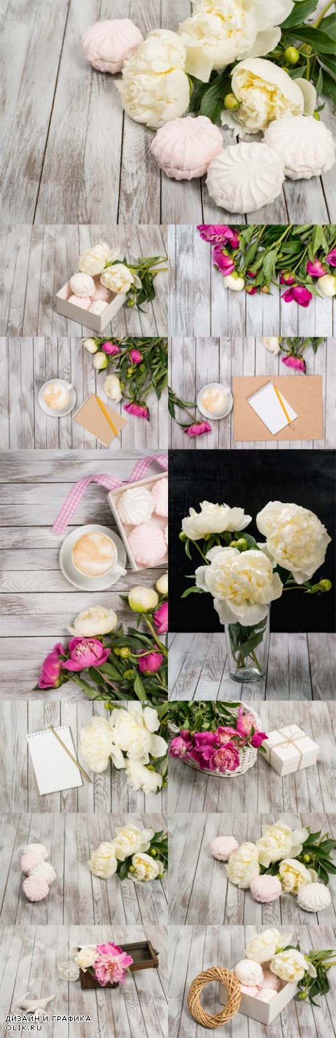 Photo  Beautiful white peonies flowers and marshmallows on white wooden background
