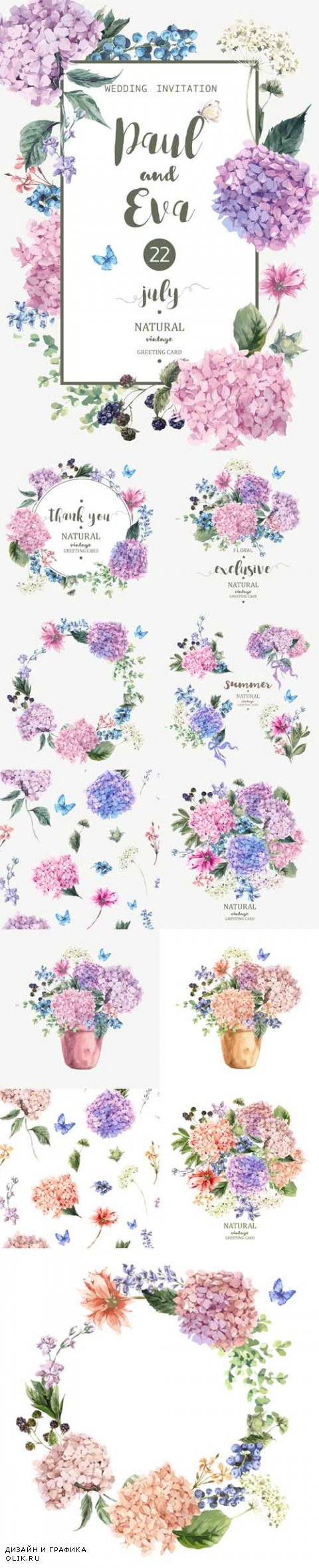 Vector Blooming Hydrangea and Garden Flowers