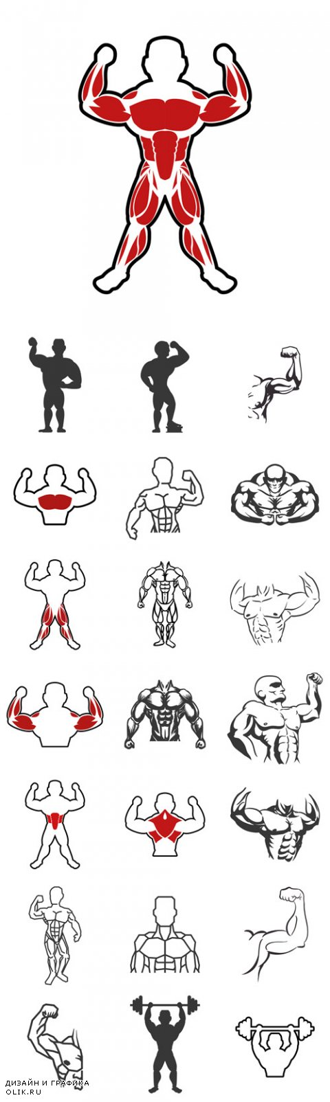 Vector Healthy lifestyle and bodybuilder concept represented by Muscle man icon