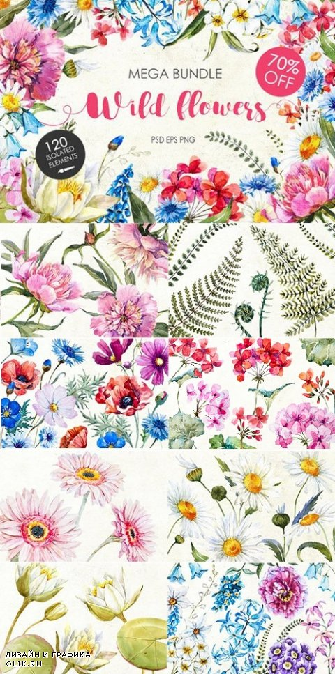 "Watercolor bundle ""WIld flowers"" - 770129"