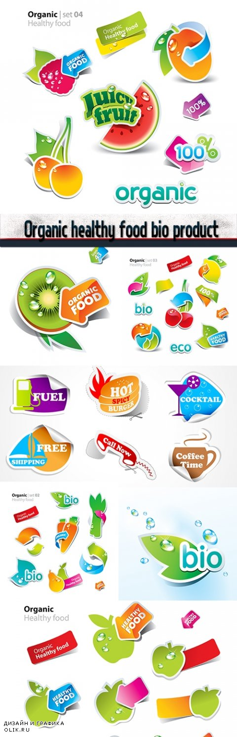Organic healthy food bio product sticker special