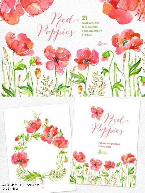 Red Poppies. Floral collection - 275388