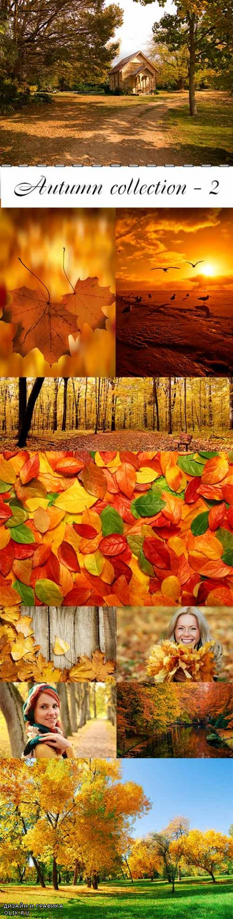 Autumn collection raster graphics - 2