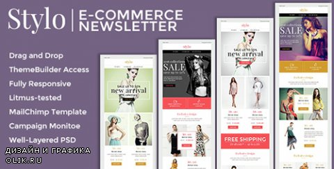 t - Stylo v1.0.0 - Ecommerce Newsletter + Builder Access - 14879613