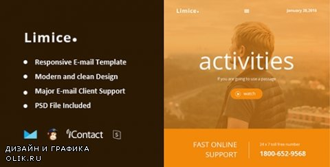 t - Limice v1.0.0 - Responsive E-mail Template + Online Access - 14780629