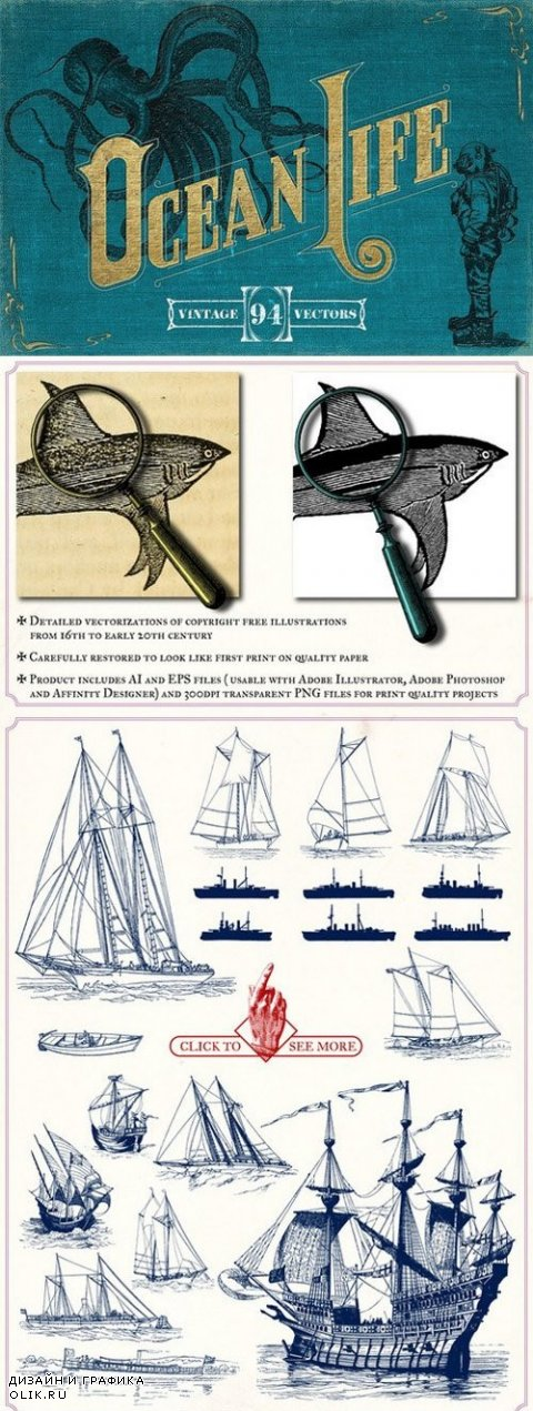 Vintage Nautical Illustrations - 797184